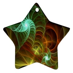 Art Shell Spirals Texture Star Ornament (two Sides) by Simbadda