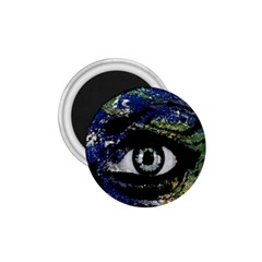 Mother Earth  1 75  Magnets