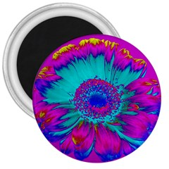 Retro Colorful Decoration Texture 3  Magnets by Simbadda