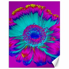 Retro Colorful Decoration Texture Canvas 18  X 24