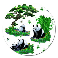Cute Panda Cartoon Magnet 5  (round) by Simbadda