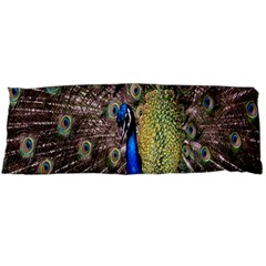Multi Colored Peacock Body Pillow Case Dakimakura (two Sides) by Simbadda
