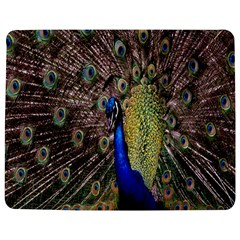 Multi Colored Peacock Jigsaw Puzzle Photo Stand (rectangular) by Simbadda