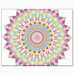 Kaleidoscope Star Love Flower Color Rainbow Canvas 8  X 10  by Alisyart