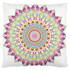 Kaleidoscope Star Love Flower Color Rainbow Large Flano Cushion Case (one Side) by Alisyart
