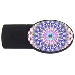 Prismatic Line Star Flower Rainbow Usb Flash Drive Oval (2 Gb) by Alisyart