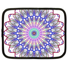 Prismatic Line Star Flower Rainbow Netbook Case (large) by Alisyart