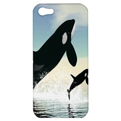 Whale Mum Baby Jump Apple Iphone 5 Hardshell Case by Alisyart