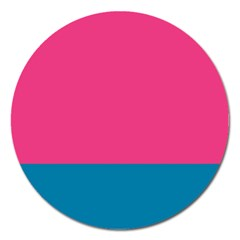 Flag Color Pink Blue Magnet 5  (round)