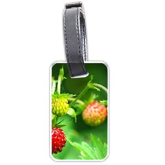 Strawberry  Luggage Tag (two Sides) by Siebenhuehner