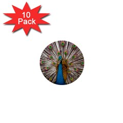 Indian Peacock Plumage 1  Mini Buttons (10 Pack)  by Simbadda