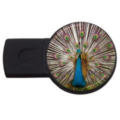 Indian Peacock Plumage Usb Flash Drive Round (2 Gb) by Simbadda
