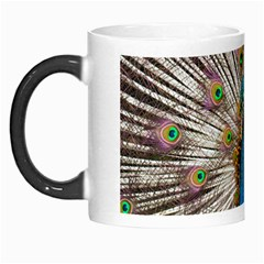 Indian Peacock Plumage Morph Mugs by Simbadda