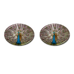 Indian Peacock Plumage Cufflinks (oval) by Simbadda