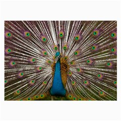 Indian Peacock Plumage Large Glasses Cloth (2 Side) by Simbadda