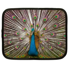 Indian Peacock Plumage Netbook Case (xl)