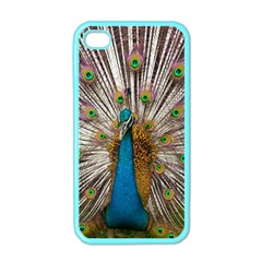 Indian Peacock Plumage Apple Iphone 4 Case (color)