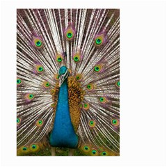 Indian Peacock Plumage Large Garden Flag (two Sides) by Simbadda