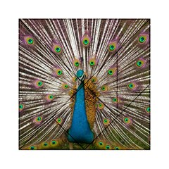 Indian Peacock Plumage Acrylic Tangram Puzzle (6  X 6 ) by Simbadda