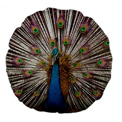 Indian Peacock Plumage Large 18  Premium Round Cushions