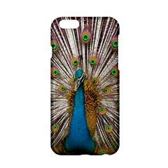 Indian Peacock Plumage Apple Iphone 6/6s Hardshell Case by Simbadda
