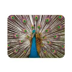 Indian Peacock Plumage Double Sided Flano Blanket (mini)  by Simbadda