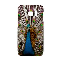 Indian Peacock Plumage Galaxy S6 Edge by Simbadda