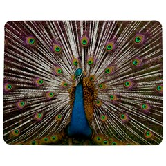 Indian Peacock Plumage Jigsaw Puzzle Photo Stand (rectangular)