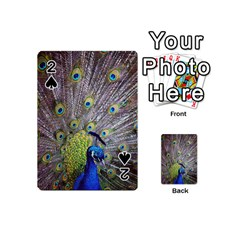 Peacock Bird Feathers Playing Cards 54 (mini)  by Simbadda