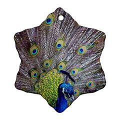 Peacock Bird Feathers Snowflake Ornament (two Sides) by Simbadda
