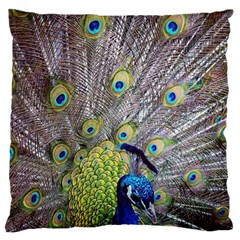 Peacock Bird Feathers Large Cushion Case (one Side) by Simbadda