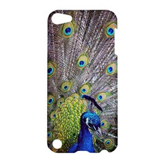 Peacock Bird Feathers Apple Ipod Touch 5 Hardshell Case by Simbadda