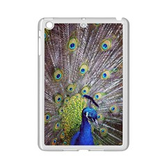 Peacock Bird Feathers Ipad Mini 2 Enamel Coated Cases by Simbadda