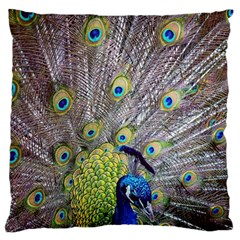 Peacock Bird Feathers Standard Flano Cushion Case (one Side) by Simbadda