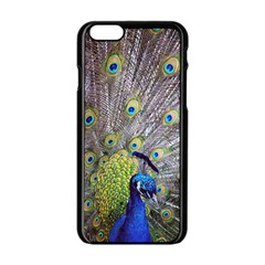 Peacock Bird Feathers Apple Iphone 6/6s Black Enamel Case by Simbadda
