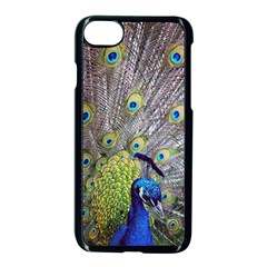 Peacock Bird Feathers Apple Iphone 7 Seamless Case (black) by Simbadda