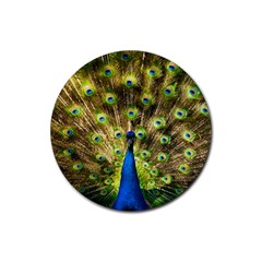 Peacock Bird Rubber Round Coaster (4 Pack)  by Simbadda