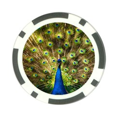 Peacock Bird Poker Chip Card Guard (10 Pack) by Simbadda