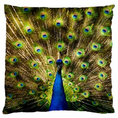 Peacock Bird Large Cushion Case (two Sides) by Simbadda
