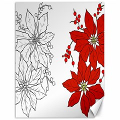 Poinsettia Flower Coloring Page Canvas 18  X 24