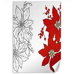 Poinsettia Flower Coloring Page Canvas 24  X 36  by Simbadda