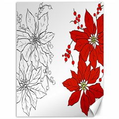 Poinsettia Flower Coloring Page Canvas 36  X 48   by Simbadda