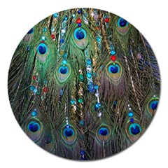 Peacock Jewelery Magnet 5  (round) by Simbadda