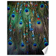 Peacock Jewelery Canvas 18  X 24   by Simbadda