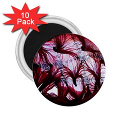 Jellyfish Ballet Wind 2 25  Magnets (10 Pack)  by Simbadda