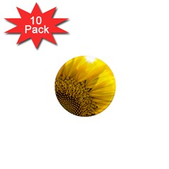 Plant Nature Leaf Flower Season 1  Mini Magnet (10 Pack)  by Simbadda