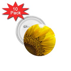 Plant Nature Leaf Flower Season 1 75  Buttons (10 Pack) by Simbadda