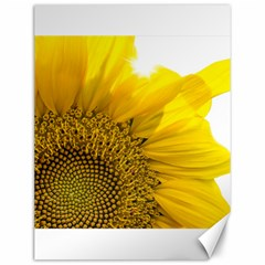 Plant Nature Leaf Flower Season Canvas 12  X 16   by Simbadda
