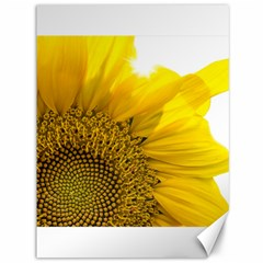 Plant Nature Leaf Flower Season Canvas 36  X 48   by Simbadda