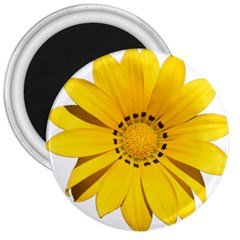 Transparent Flower Summer Yellow 3  Magnets by Simbadda